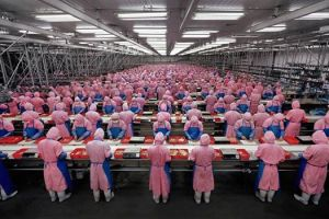 Manufacturing #17 Dead Chicken Processing Plant, Dehui City, Jilin Province, China, 2005. Edward Burtynsky